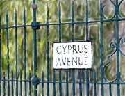 Cyprus Ave2
